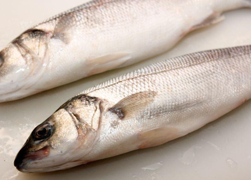 Рыба сибас