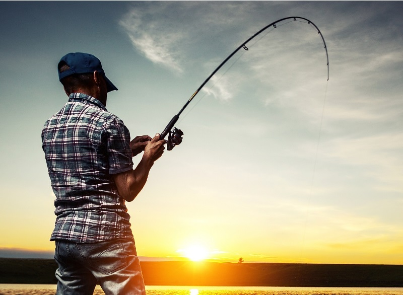 рыбалка на спиннинг скачать игру